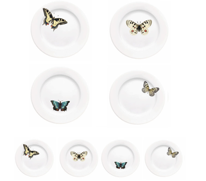 Vintage butterfly plates