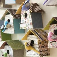 tamar-birdhouselowres